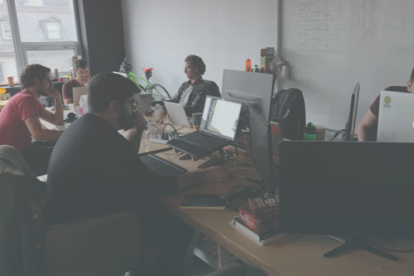 bus.com team working on laptops in the office
